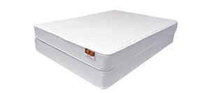 shelby plush mattress